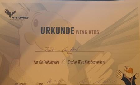 wing_kids